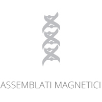 Assemblati magnetici